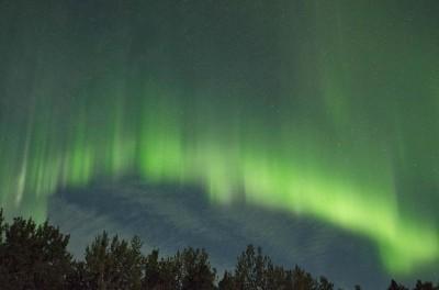 Aurora 2471 Wheeler